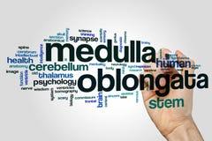 Free Medulla Oblongata Word Cloud Royalty Free Stock Image - 90880146