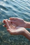 medusa руки Стоковая Фотография RF