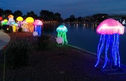 Medusa ao lado de um lago no festival de lanterna chinês fotografia de stock