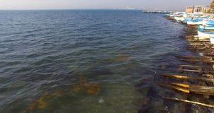 Medusa en las aguas frías de la bahía de Burgas en Bulgaria Fotos de archivo