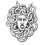 Medusa greek myth creature engraving vector. Medusa head with snakes greek myth creature engraving vector illustration. Scratch board style imitation. Black and Stock Illustration