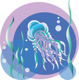medusa Illustrazione di vettore Il paesaggio, le meduse e le alghe subacquei Fotografia Stock