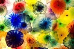 Medusas Fotos de archivo libres de regalías