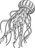 Medusas antiesfuerzas Dé el bosquejo exhausto para la página antiesfuerza adulta del colorante Imagen de archivo libre de regalías