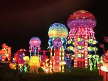 Medusas de las luces de China imagen de archivo