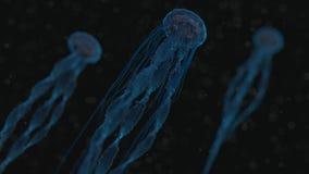 Medusas generadas por ordenador Foto de archivo