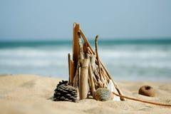 Meduse nella sabbia della spiaggia Fotografia Stock