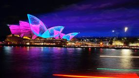 Meduse o Sydney Opera House giganti? fotografia stock libera da diritti