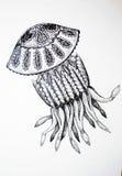 meduza Obraz Stock