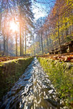 Medvednica mountain creek vertical view Stock Photo