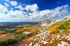 Medycyna łęku las państwowy Wyoming fotografia royalty free