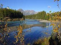 Medycyna jezioro w Jaspisowym parku narodowym w Kanada, Alberta zdjęcie royalty free