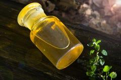 Medycyna od natury - apteki butelka obrazy royalty free
