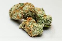 Medyczna marihuana Obrazy Royalty Free