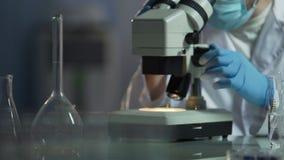 Medycznego naukowa dyrygentury pokolenie nowi mikroorganizmy, badanie zdjęcie wideo
