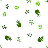 Medycznej rośliny wektoru Bezszwowy Płaski wzór Obrazy Royalty Free
