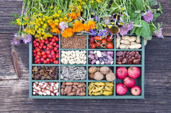 Medyczni ziele i zdrowy karmowy pojęcie Zdjęcia Stock