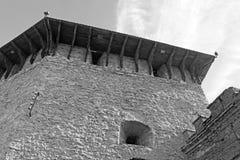 Medzhybizh城堡,乌克兰塔顶视图  免版税库存照片