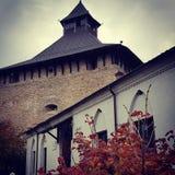 Medzhybizh slott i höst, Ukraina royaltyfri bild