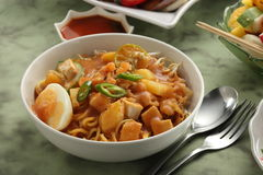 Mee Rebus stock photography