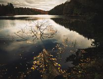At Meech Lake. Meech Lake is located within Gatineau Park in the Outaouais region of Quebec, Canada Royalty Free Stock Images