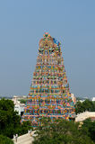 Meenakshi  Sundareswarar Temple Royalty Free Stock Photos