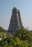 Meenakshi Sundareswarar Temple in Madurai stock photo