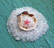 Meerââsalt im Shell auf hölzernem Hintergrund Lizenzfreie Stockfotografie