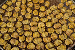 Meeräsche-Fischeier Lizenzfreie Stockfotos