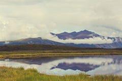 Meer in Alaska Royalty-vrije Stock Foto's