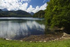 Meer Alpsee, met zwanen, Beierse Alpen, Duitsland Royalty-vrije Stock Foto