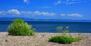 Meer Baikal, Rusland stock fotografie