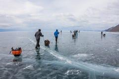 Meer Baikal, Rusland - Maart 24, 2016: Groep toeristenvolwassenen a Royalty-vrije Stock Afbeeldingen