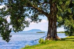 Meer Balaton in de zomer royalty-vrije stock foto