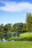 Meer bij de golfcursus Royalty-vrije Stock Afbeeldingen