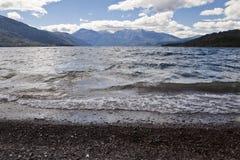 Meer bij het nationale park Alerces stock foto