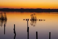 Meer bij zonsondergang Stock Foto