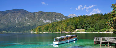 Meer Bohinj, Slovenië royalty-vrije stock afbeelding