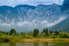 Meer Bohinj, Slovenië Stock Afbeeldingen