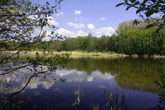 Meer, bos en hemel stock afbeeldingen