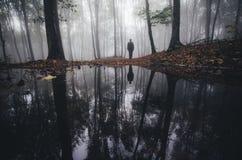Meer in bos met de bezinning van het mensensilhouet stock fotografie
