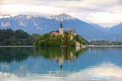 Meer dat met eiland, Slovenië wordt afgetapt Royalty-vrije Stock Foto's