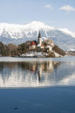 Meer dat met Afgetapt erachter kasteel wordt afgetapt, Slovenië Royalty-vrije Stock Foto's