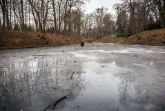 Meer in de herfstbos met ijs wordt behandeld dat Stock Foto's