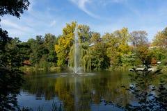 Meer in de kuuroordtuin van Heilbad Heiligenstadt royalty-vrije stock foto