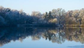 Meer in de winter Stock Fotografie