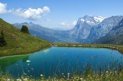 Meer in de Zwitserse Alpen Stock Fotografie