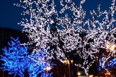 Meer der Leuchte Girlanden auf Bäumen Lizenzfreies Stockbild