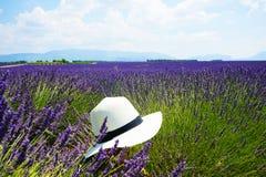 Meer des Lavendels in Süd-Frankreich Lizenzfreie Stockfotografie