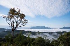 Meer des Nebels am Mönch Poonsuda Lizenzfreies Stockbild